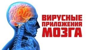 zastavka_virusi_new_300